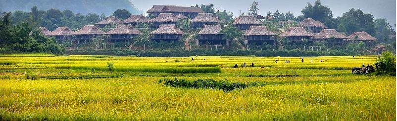 Khách sạn 4 sao Mai Châu Ecolodge - Nghỉ dưỡng đẳng cấp giữa thiên nhiên xanh