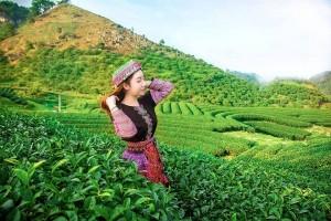 khách hàng maichau tourist Nguyễn Ngọc Thúy